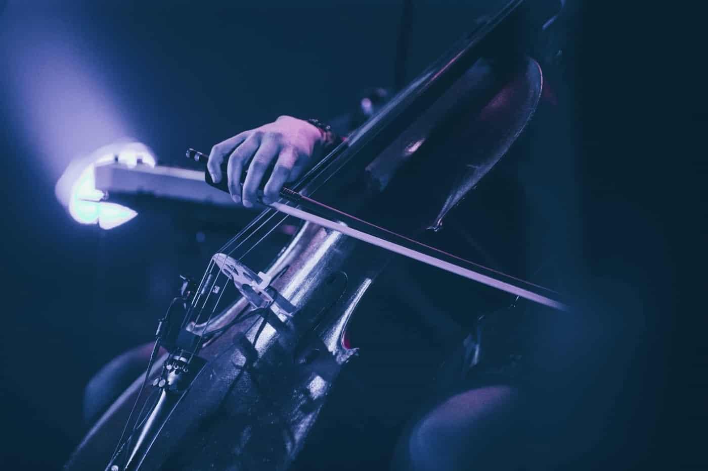 agnes obel cellist
